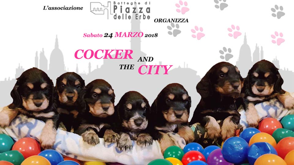 Vicenza_evento