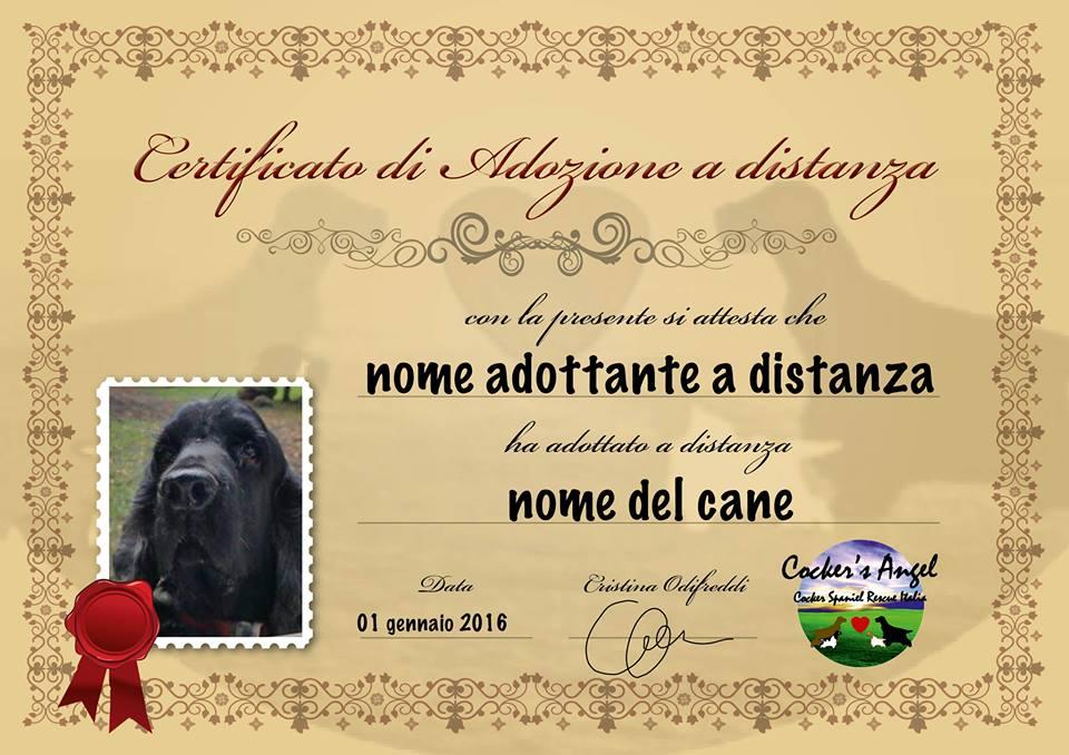 Certificato adozione  a distanza